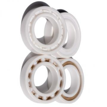 Full Ceramia Ball Bearing 6201ce 6203ce 6203ce Zro2 Bearing for Suitable for High Temperature Environment